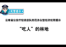 云南:吃人的林地